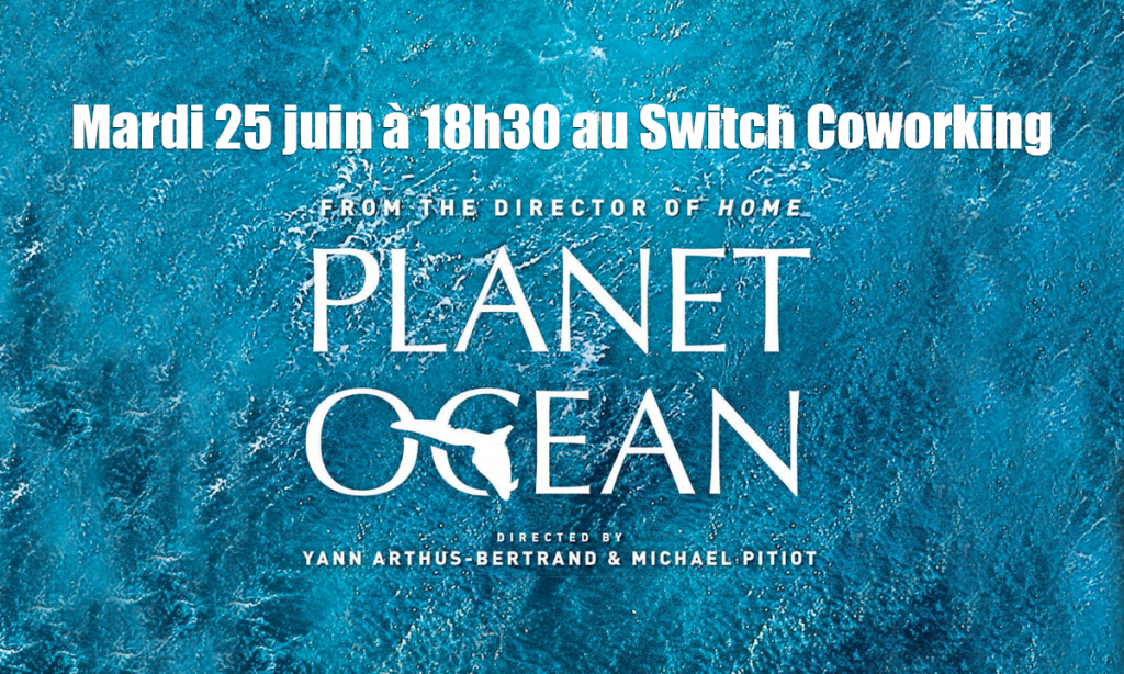 [Projection] : Ocean Planet de Yann Arthus-Bertrand et Michael Pitiot • MAR 25 JUIN à 18h30
